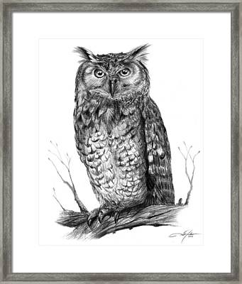 Eagle Owl Framed Print by Dale Jackson