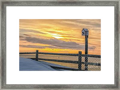 Early Bird Framed Print by Scott Thorp