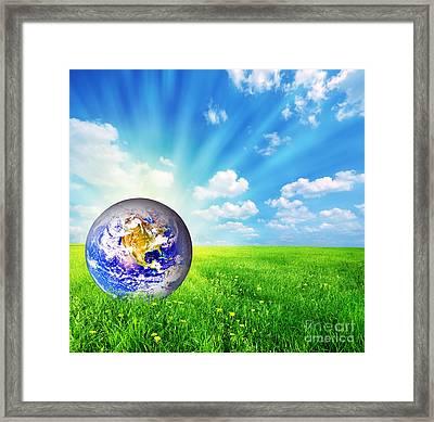 Earth Globe On Green Grass Framed Print by Michal Bednarek