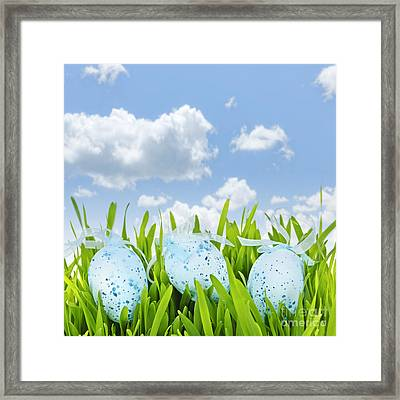 Easter Eggs In Green Grass Framed Print by Elena Elisseeva