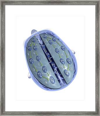 Eeg, Electrodes On Head, Artwork Framed Print