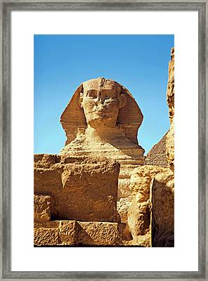 Egypt, Cairo, Giza, The Sphinx Framed Print