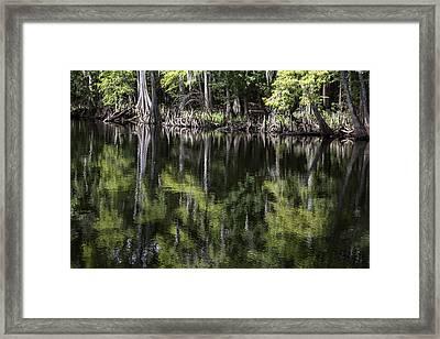 Emerald Reflections Framed Print