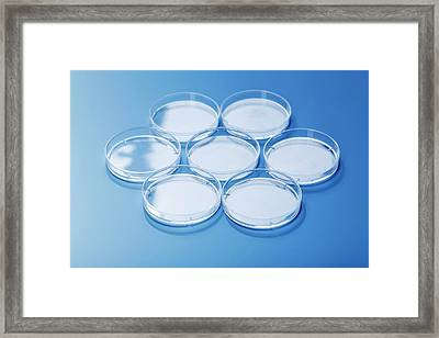 Empty Petri Dishes Framed Print