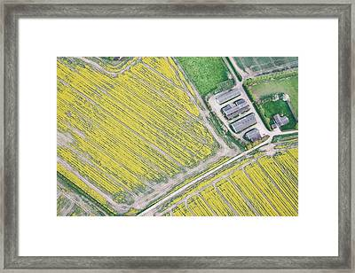 English Farm Framed Print by Tom Gowanlock