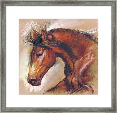 English Horse Variant 1 Framed Print by Zorina Baldescu