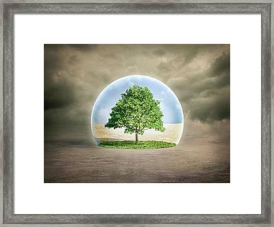 Environmental Protection Framed Print by Andrzej Wojcicki/science Photo Library