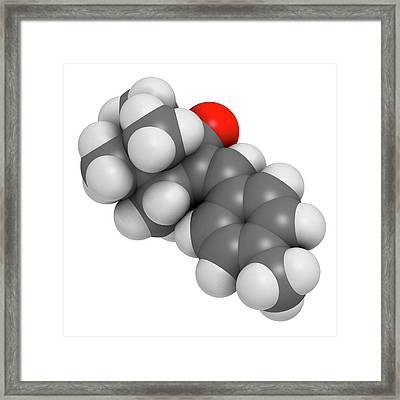 Enzacamene Sunscreen Molecule Framed Print by Molekuul