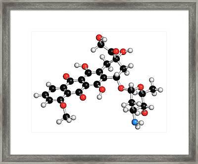 Epirubicin Cancer Drug Molecule Framed Print by Molekuul