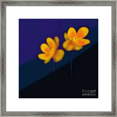 Framed Print featuring the digital art Eternal by Latha Gokuldas Panicker