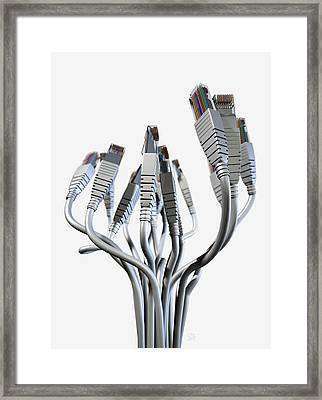 Ethernet Abstract Bouquet Framed Print by Allan Swart