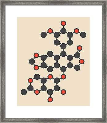 Etoposide Cancer Drug Molecule Framed Print by Molekuul