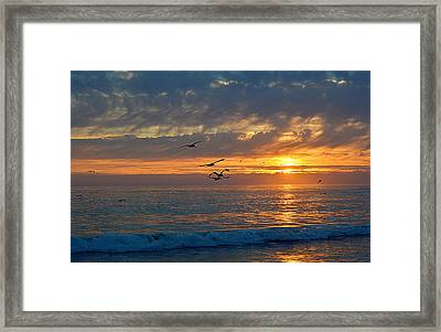 Eventide Framed Print by AJ  Schibig