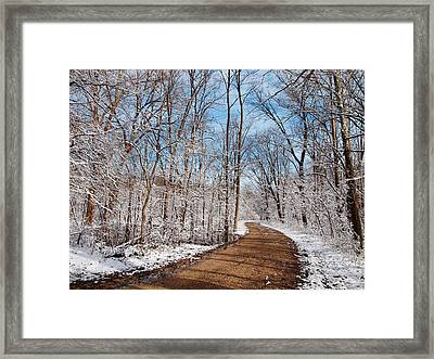 Excursion... Framed Print by Tom Druin