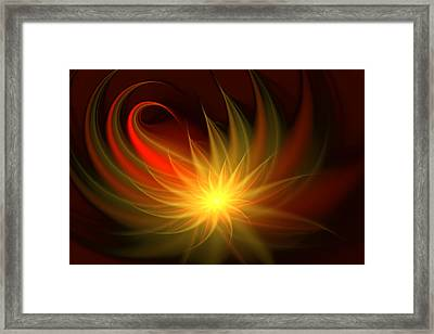 Exotic Flower Framed Print by Svetlana Nikolova