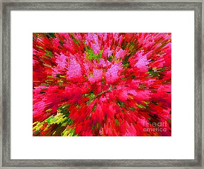 Explosion Of Spring Framed Print