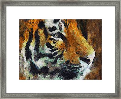 Eye Of The Tiger Framed Print by Georgiana Romanovna