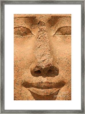 Face Of Hathor Framed Print by Stephen & Donna O'Meara