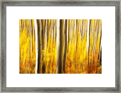 Fall Abstract Framed Print