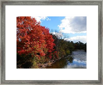 Fall At The Credit River Framed Print by Pema Hou