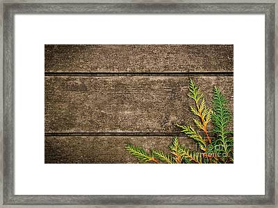 Fall Background Framed Print by Carlos Caetano