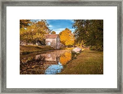 Fall Colors Framed Print by Eduard Moldoveanu