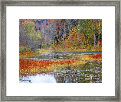 Fall Colors Framed Print