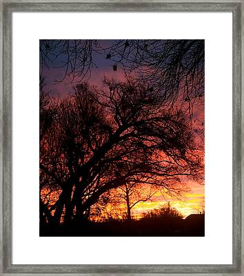 Fall Fire Framed Print