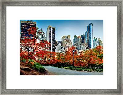 Fall In Central Park Framed Print by Az Jackson