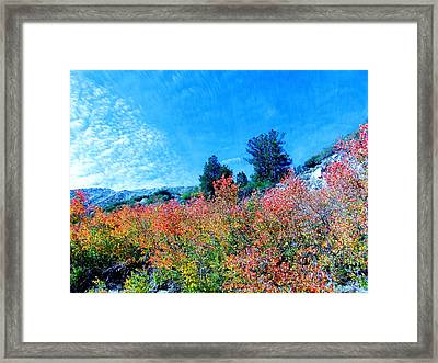 Fall Is Here Framed Print