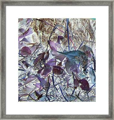 Fall Leaves Framed Print by Larry Campbell