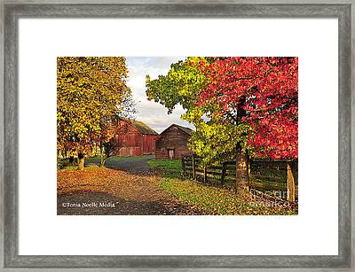 Fall On A Farm In Oregon Framed Print