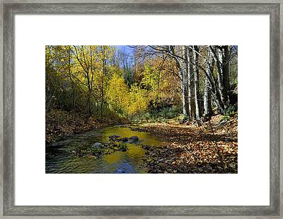 Fall River Framed Print by Guido Montanes Castillo
