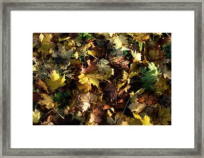 Framed Print featuring the digital art Fallen Leaves by Ron Harpham