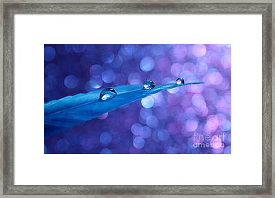 Fantasy Feather Framed Print