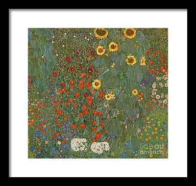 Red Sunflower Framed Prints