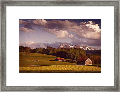 Farmer At Work Framed Print by Dominique Dubied