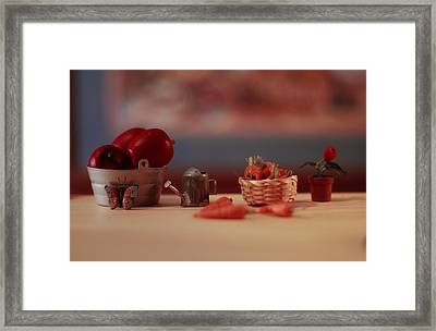 Farmstand 5 Framed Print by JP Design