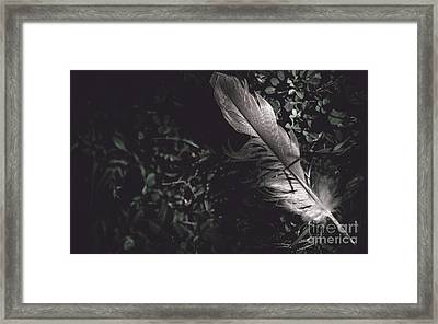 Feather Quill Lying In Green Grass. Writers Guild  Framed Print