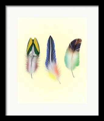 Feathers Digital Art Framed Prints