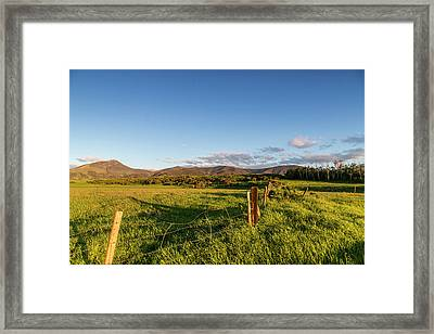 Fencerow In Pastureland Framed Print by Chuck Haney