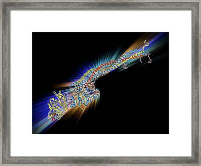 Fibrinogen Molecule Framed Print by Laguna Design