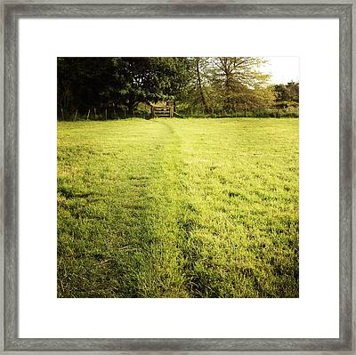 Field Framed Print by Les Cunliffe