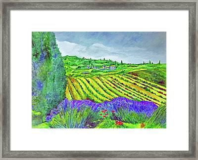 Fields At Dievole Framed Print