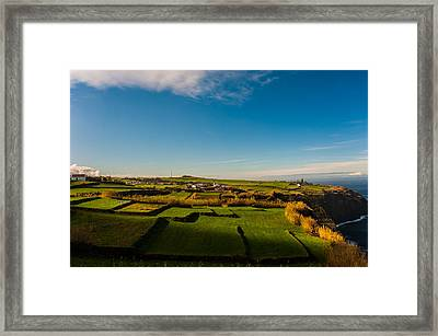 Fields Of Green And Yellow Framed Print