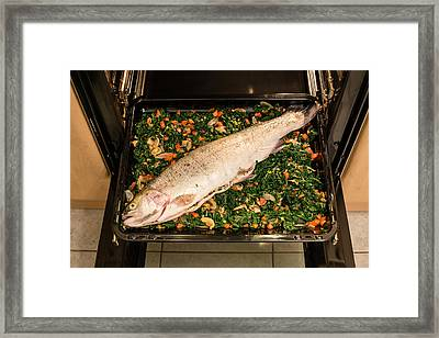 Filled Salmon Trout Framed Print by Frank Gaertner