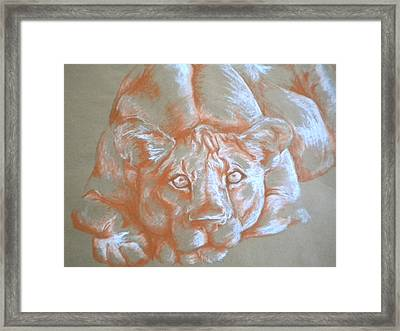Finding Security Framed Print by Molly Wilson