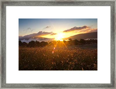 Finding Serenity Framed Print by Everett Houser