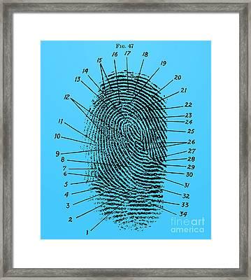 Fingerprint Diagram, 1940 Framed Print