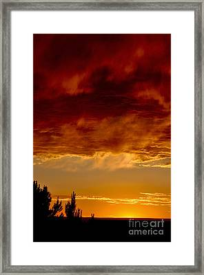 Framed Print featuring the photograph Fire In The Sky by Gina Savage
